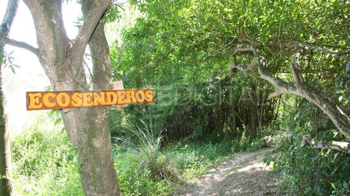 En algunas zonas de Jaaukanigás ya hay senderos y miradores para observar la naturaleza.