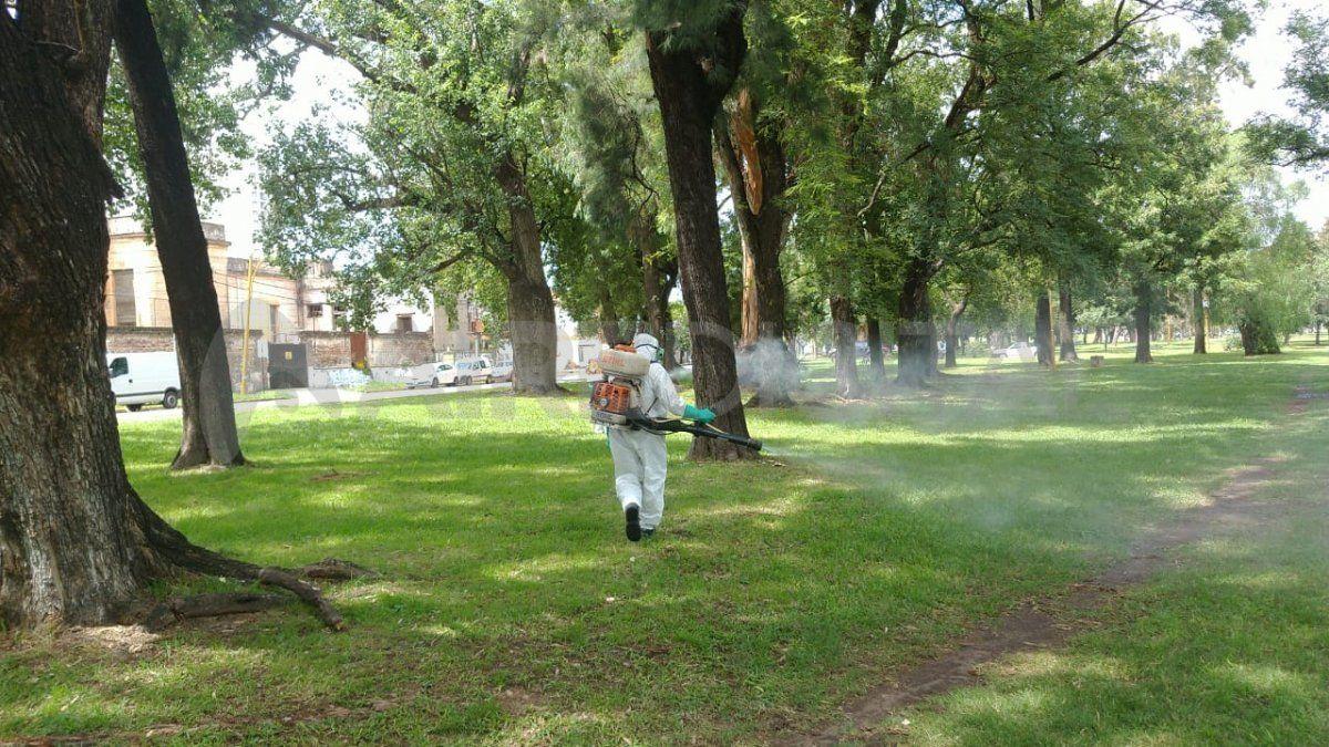 La Municipalidad dio a conocer los puntos dónde se realizará la fumigación.