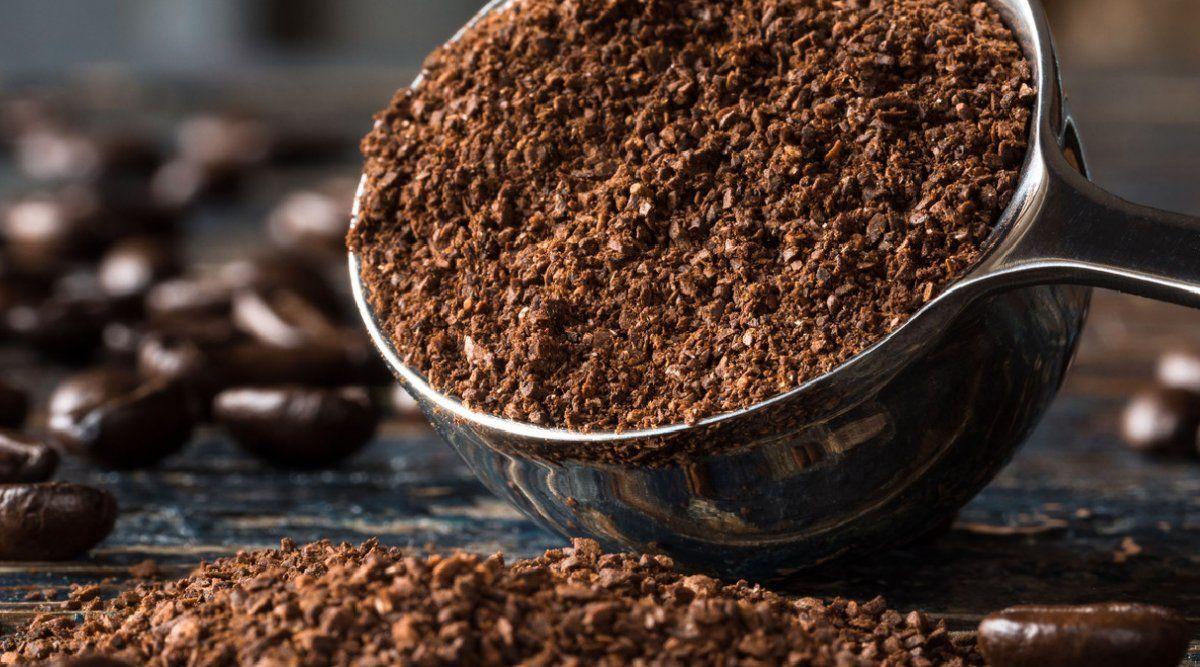 Cómo usar las sobras del café en beneficio de tu jardín