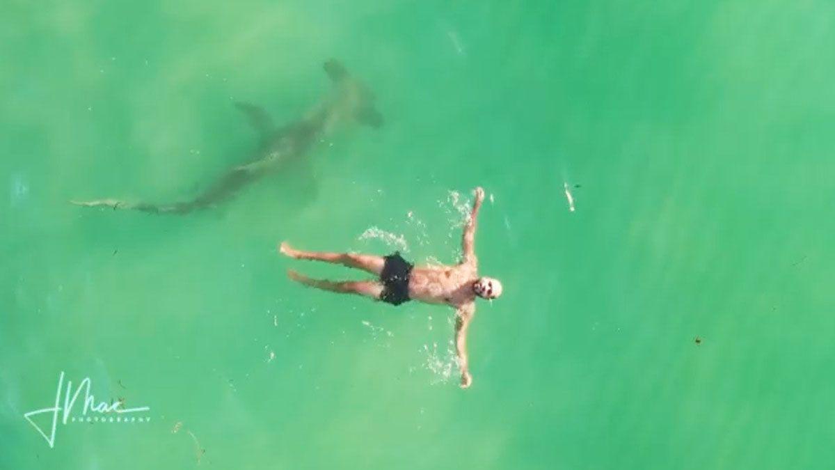 ¡Impactante! Hombre nada tranquilo mientras un tiburón está bajo de él