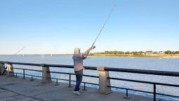El gobierno de Santa Fe concluyó este miércoles con las presentaciones ante la justicia en el marco de la medida cautelar que establece veda total para la pesca en aguas del río Paraná. A través de Fiscalía de Estado, la provincia elevó una propuesta de veda parcial para la pesca comercial y habilitación de la pesca deportiva con devolución.