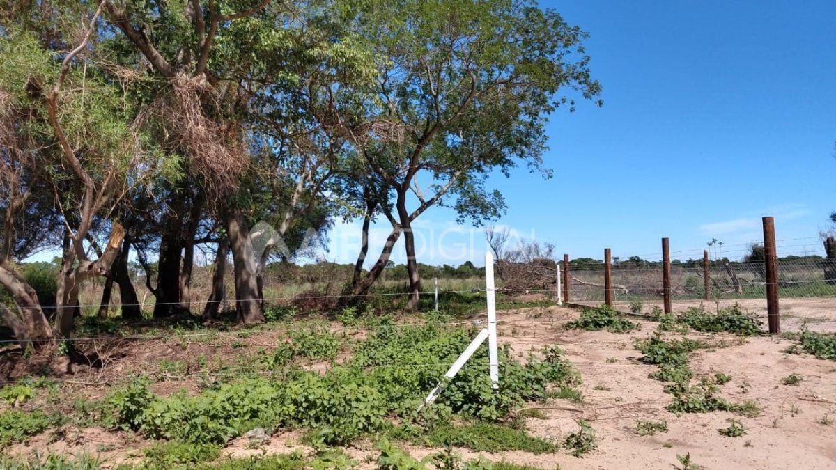 El terreno se comenzó a desmontar hace dos meses y ya se cercaron varios lotes.