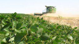 En los últimos días la suba en los precios de la soja, así como la de otros granos, era atribuida al paro en los puertos exportadores de la Argentina.