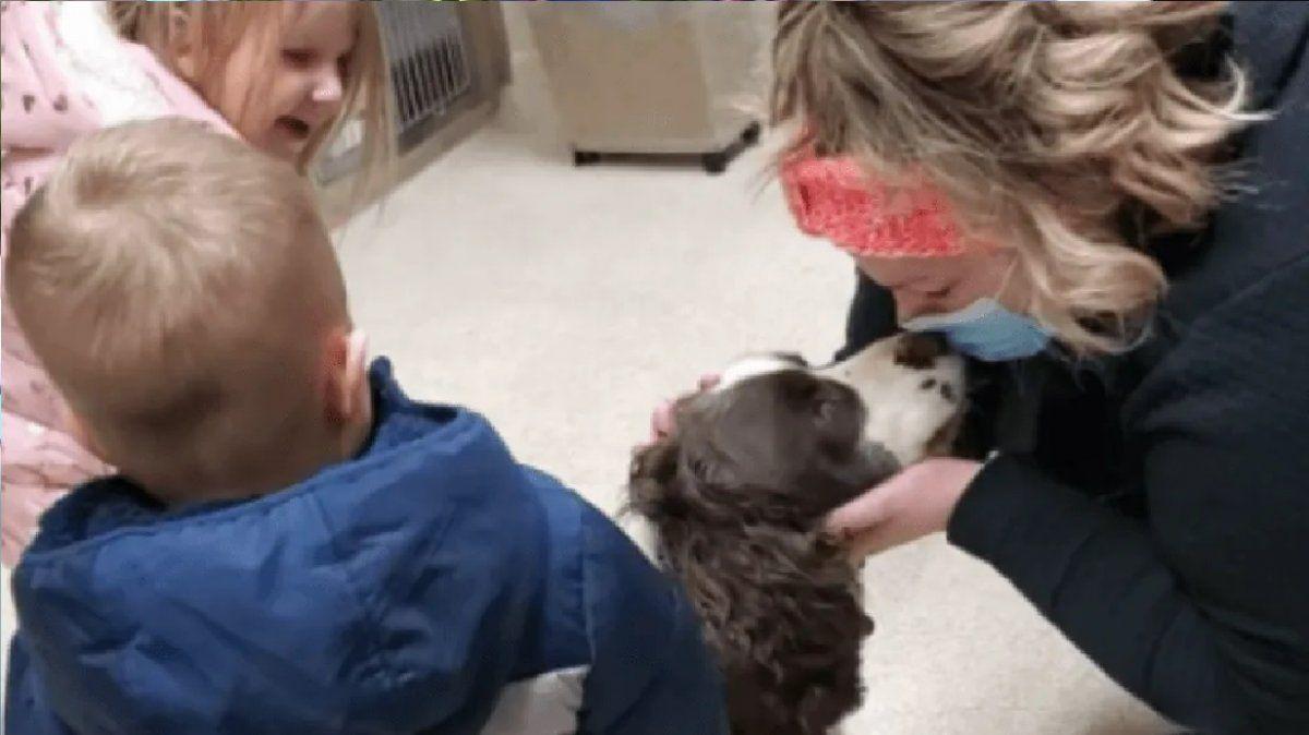 Perrito se encontró con sus dueños tras permanecer 43 días atrapado en un pozo