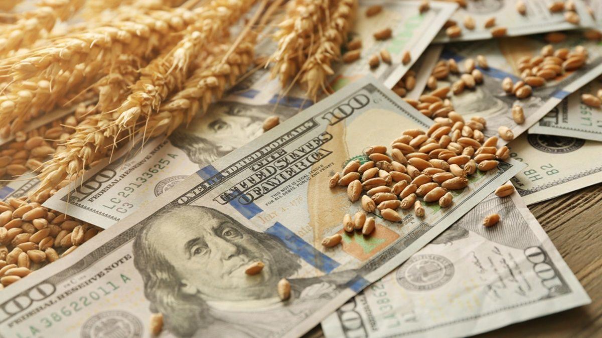 Señal para el campo: el Gobierno anunció una baja de retenciones para la soja y derivados.