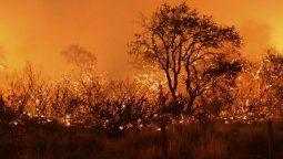 El proyecto reforma la ley 26.815 del Manejo del Fuego por lo que se se prohíbe realizar modificaciones en el uso de las superficies que tenían previo a los incendios provocados o accidentales.