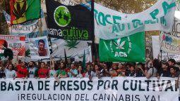 La semana del cannabis tendrá su cierre el próximo sábado, 21 de noviembre, cuando se realice en diferentes ciudades del país la Marcha Nacional de la Marihuana.