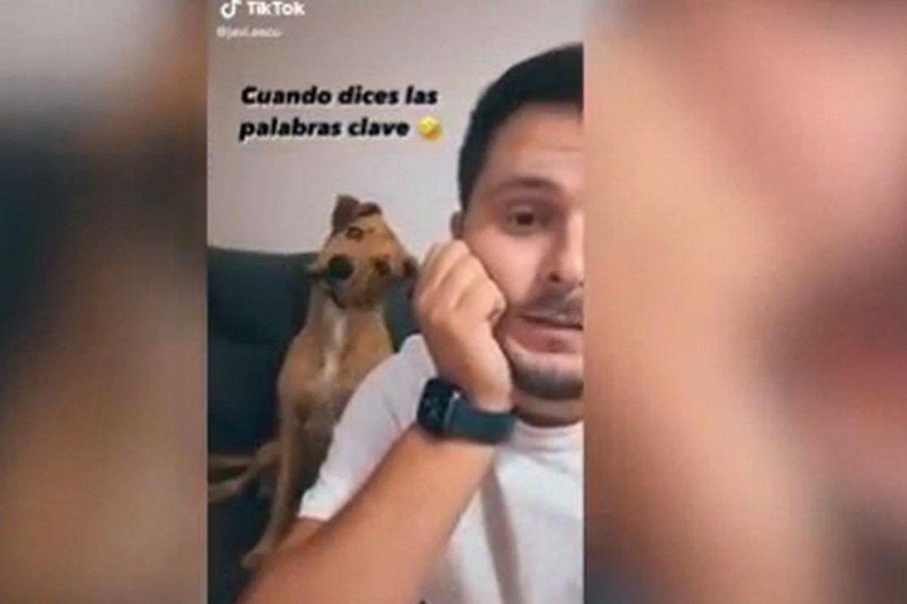 La increíble reacción del perro al escuchar la palabra calle