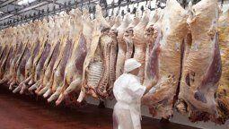 En noviembre, las ventas hacia China fueron un récord desde que se abrió el mercado, orillando 54 mil toneladas peso producto, dentro de las cuales, casi 10 mil toneladas fueron carnes congeladas con hueso.