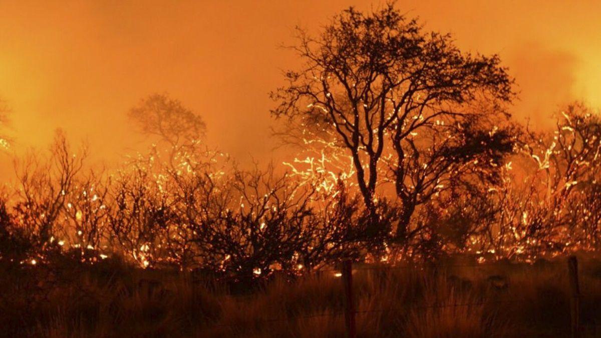 Los incendios de pastizales azotan a diversas regiones de Argentina.
