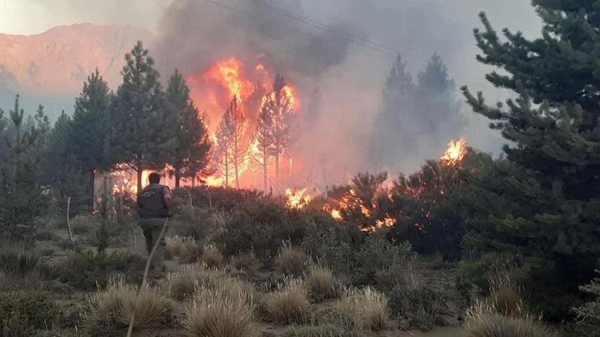 El incendio se originó el pasado domingo a unos 15 kilómetros de El Bolsón.