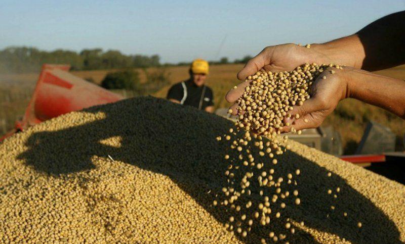 """El Gobierno desmiente una suba en las retenciones pero en el mercado de granos """"desconfían"""""""