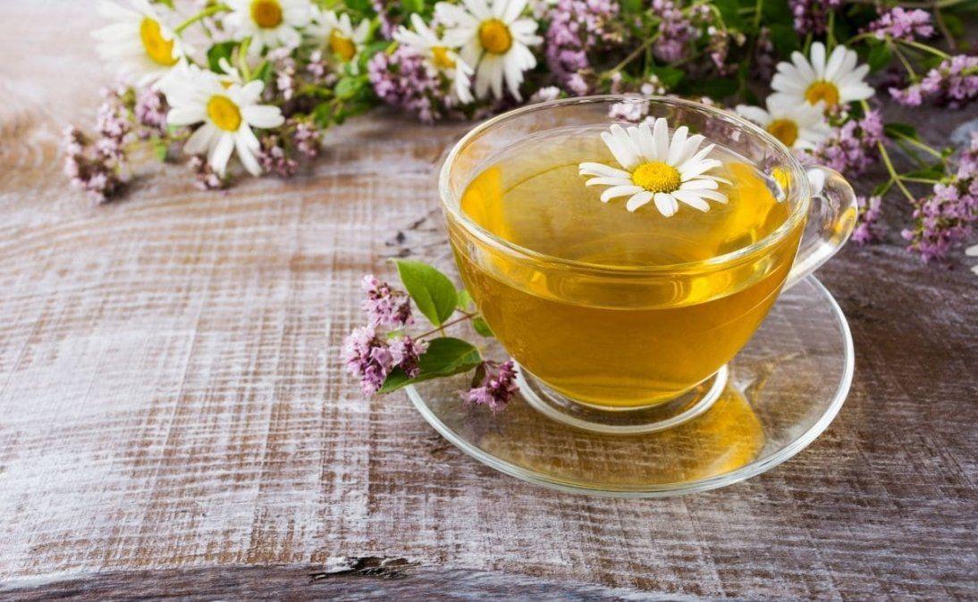 Cuál es el mejor ingrediente para mejorar la salud de los riñones