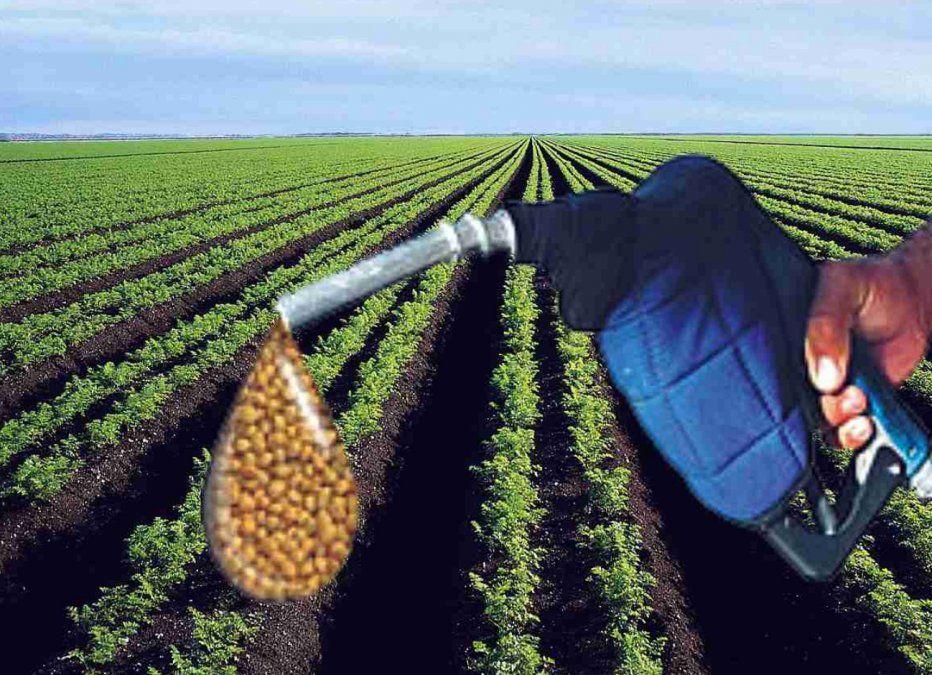 El acumulado producido de biodésel registrado entre enero y septiembre totalizó 1.108.382 toneladas.