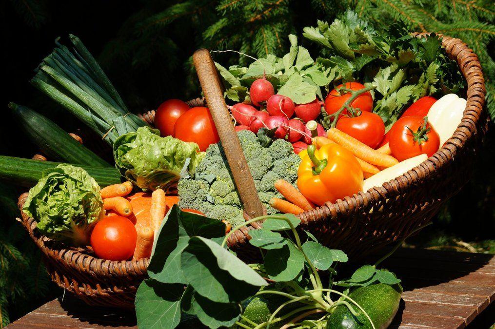 Frutas, verduras y té, los mejores aliados para reducir el riesgo de alzhéimer