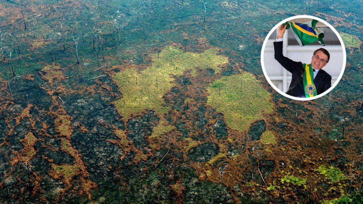 La desforestaciónde la selva del Amazonas comenzó hace varias décadas