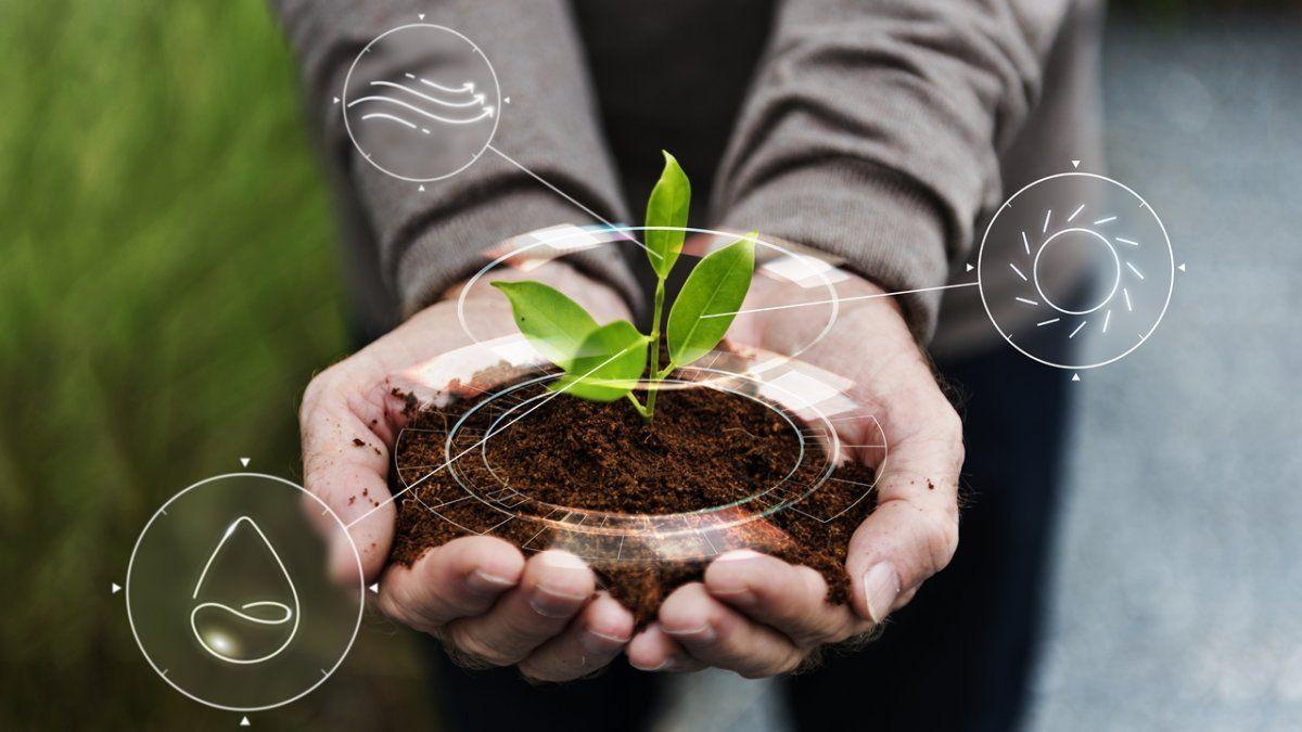 Las AgTech ayudan al proceso de transformación de la agricultura.