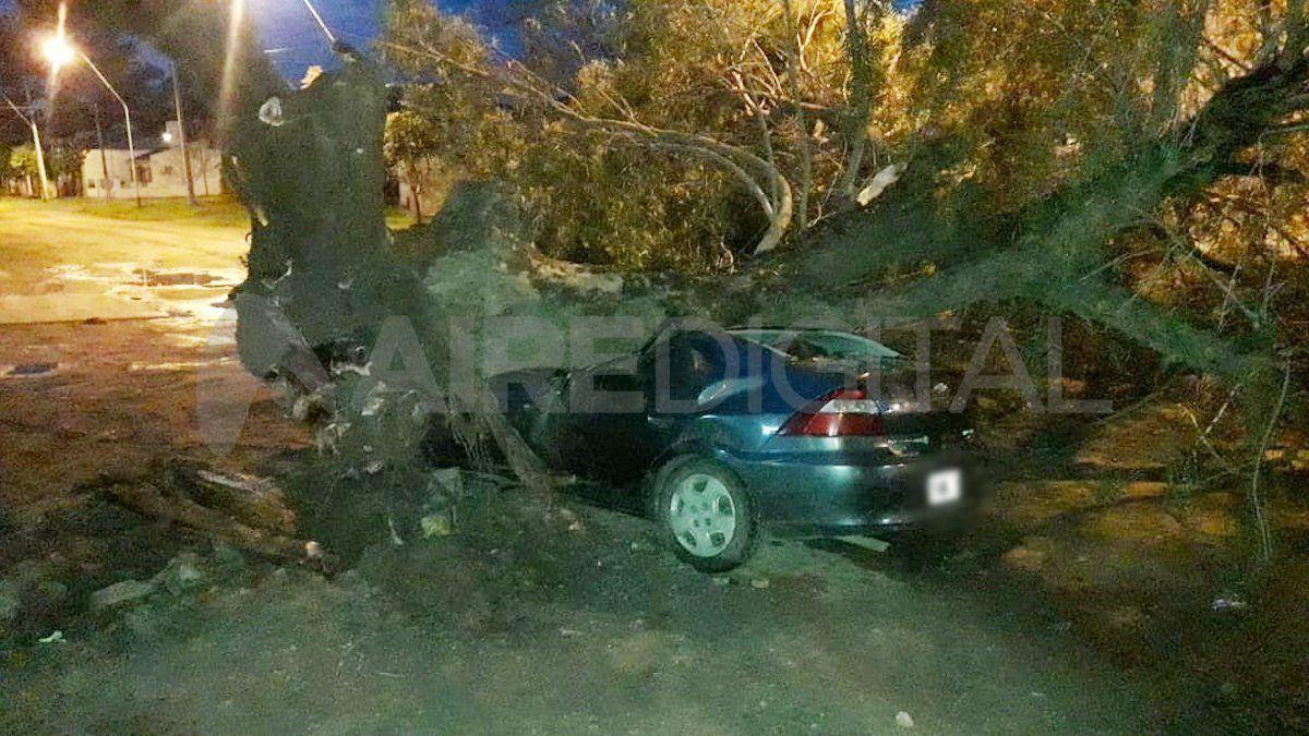Santo Tomé: un árbol aplastó un auto con el conductor adentro