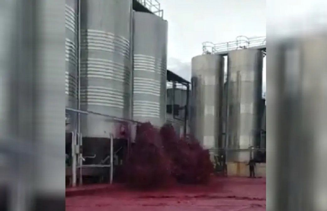 Video: se reventó un depósito con 50 mil litros de vino tinto y hubo un tusnami de malbec