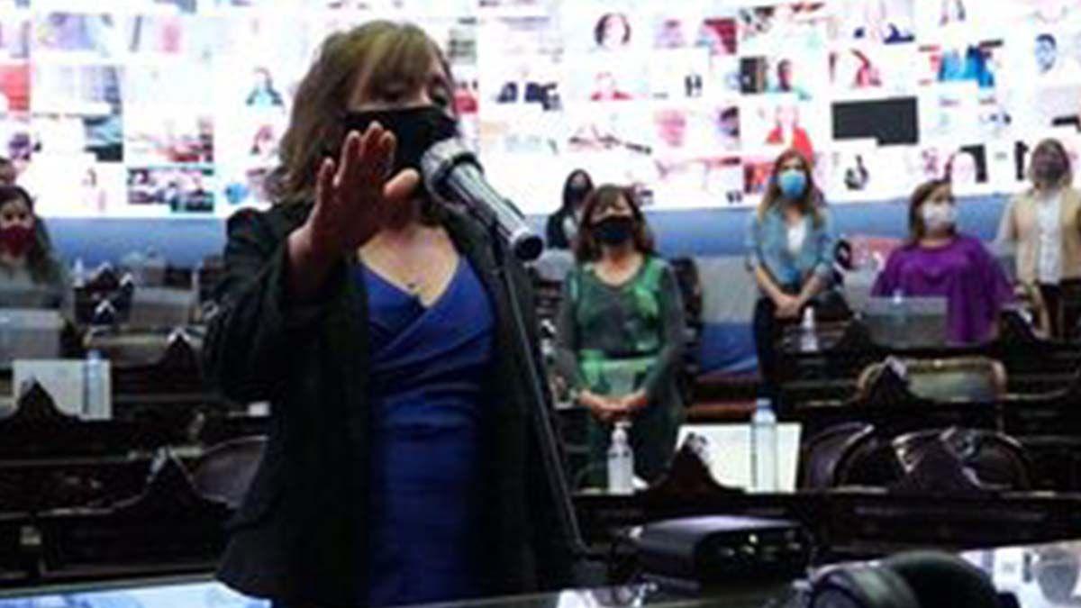 La dirigente salteña Alcira Figueroa juró este miércoles como diputada nacional en reemplazo de su comprovinciano del Frente de Todos
