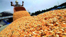 El Ministerio de Agricultura, Ganadería y Pesca decidió dejar sin efecto el tope de 30.000 toneladas diarias para el registro de Declaraciones Juradas de Ventas al Exterior (DJVE) de maíz, al llegar a un acuerdo con el Consejo Agroindustrial Argentino (CAA) que asegura el abastecimiento interno del grano.