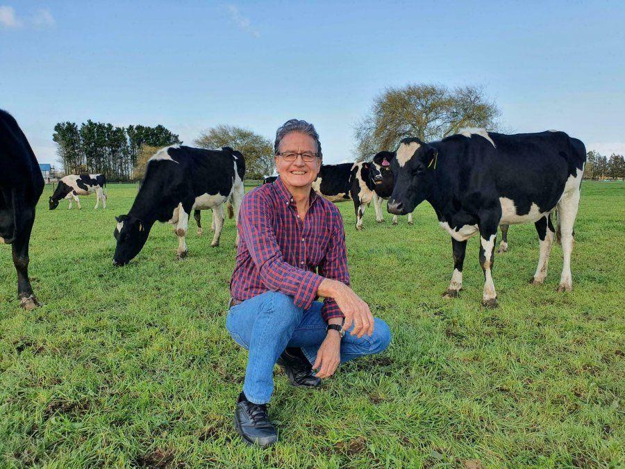 Científicos enseñan a vacas a ir al baño para reducir gases de efecto invernadero
