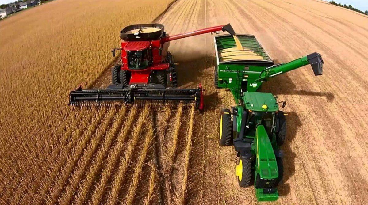 Una buena conexión a internet resulta fundamental para el desarrollo en materia agrícola y ganadera.