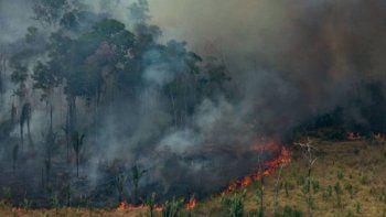 Por la deforestación, ahora parte del Amazonas emite gases contaminantes