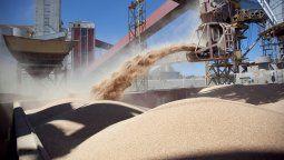 El informe agroeconómico de la entidad detalla que para la actual campaña se calcula que el área sembrada será de 8 millones de hectáreas cosechables, de las cuales 996.000 corresponden a trigo y cerca de 7 millones a cultivos estivales.