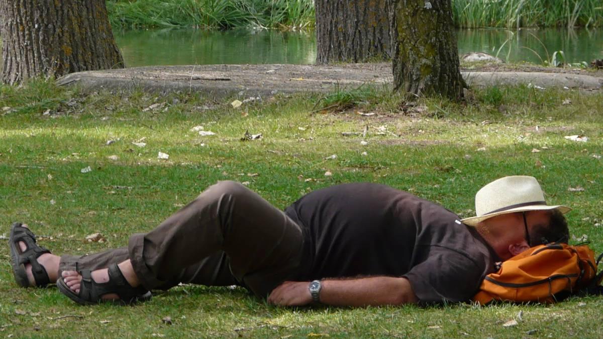 La reivindicación de la siesta: la ciencia afirma que es una necesidad biológica